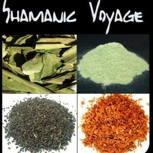 Shamanic Voyage