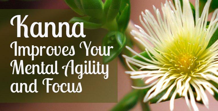 Kanna-Mental-Agility