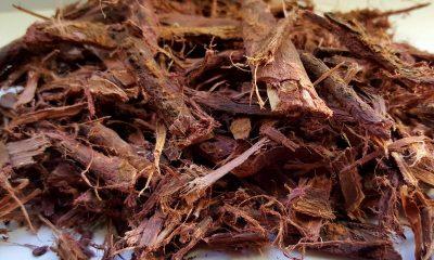 Jurema (Mimosa Hostilis Root Bark)