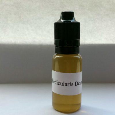 Indian Warrior E - Liquid (Pedicularis densiflora)