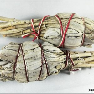 "White Sage 4 "" bundle"